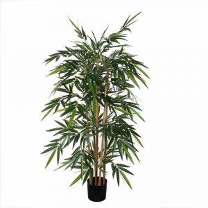 Bamboe plant in plastic pot van Mica Decorations