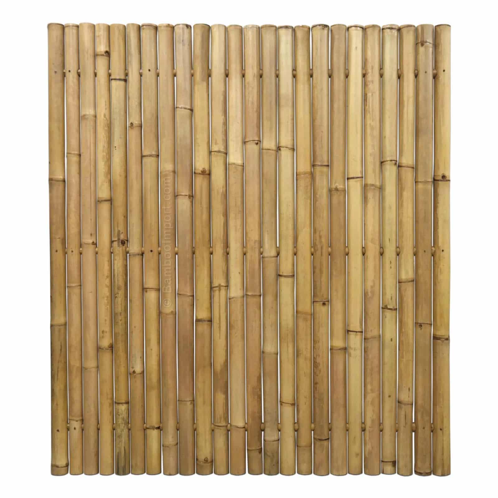 Bamboe schutting giant van bamboo import