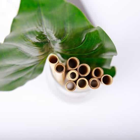 duurzame-bamboe-rietjes