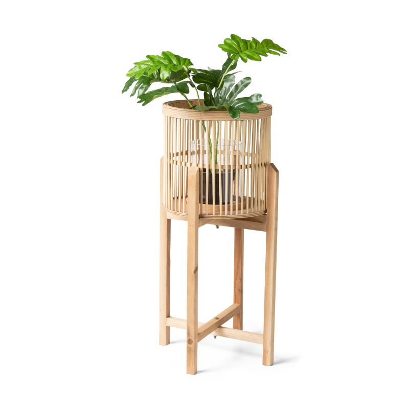 Bamboe plantenbak van de xenos